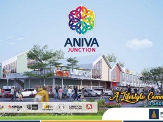 Aniva Junction